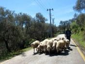 Backroads of Turkey