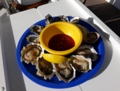 Fresh oysters from the Wescot Shellfish Co.